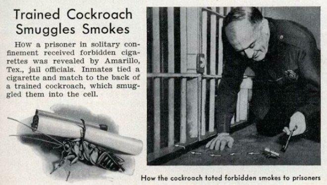 Вещи, изготовленные заключенными тюрем