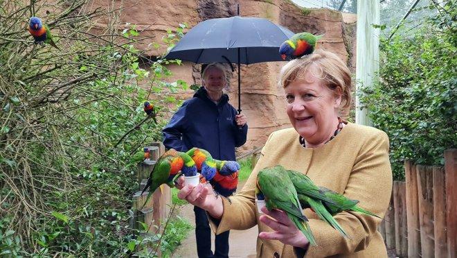 Ангела Меркель за три дня до отставки посетила птичий парк Марлоу