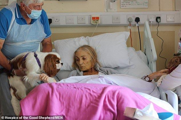 Смертельно больная женщина получила возможность в хосписе проститься с любимыми собаками и конем