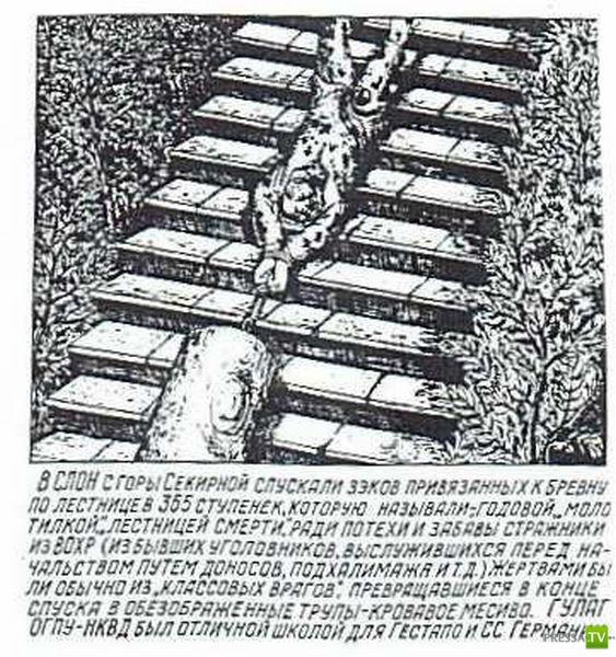 Рисунки из ГУЛАГа. ЖУТЬ! (39 фото)