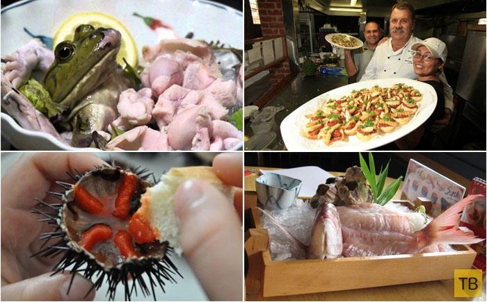 Топ 10: Самые садистские блюда в мире (11 фото)