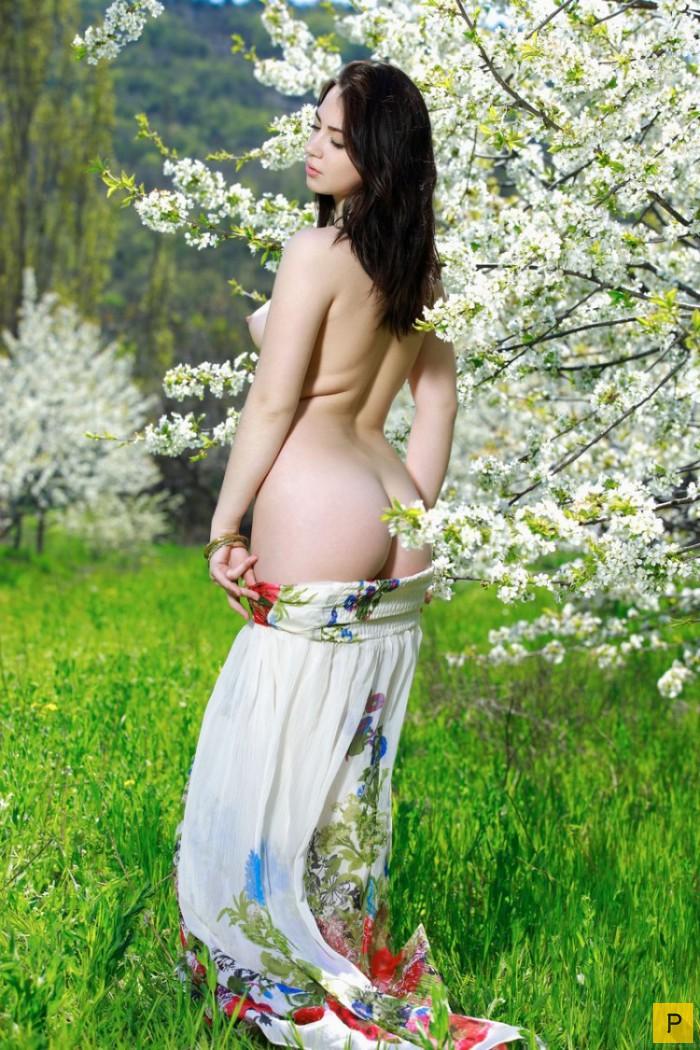 Фото голышом в цветущем саду #8