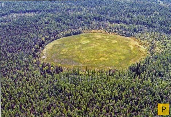 Самое интересное о Тунгусском метеорите (6 фото)