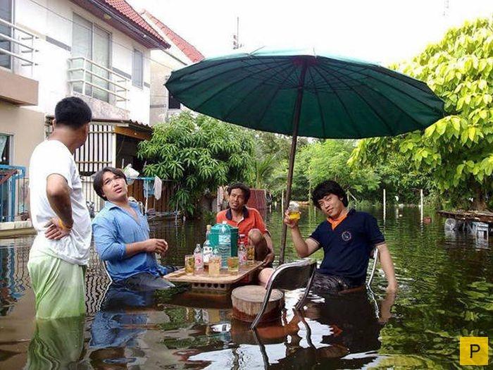 Посылкою две, прикольные картинки таиланда