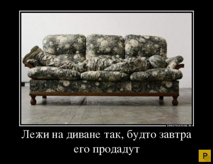 Картинки про диван смешные