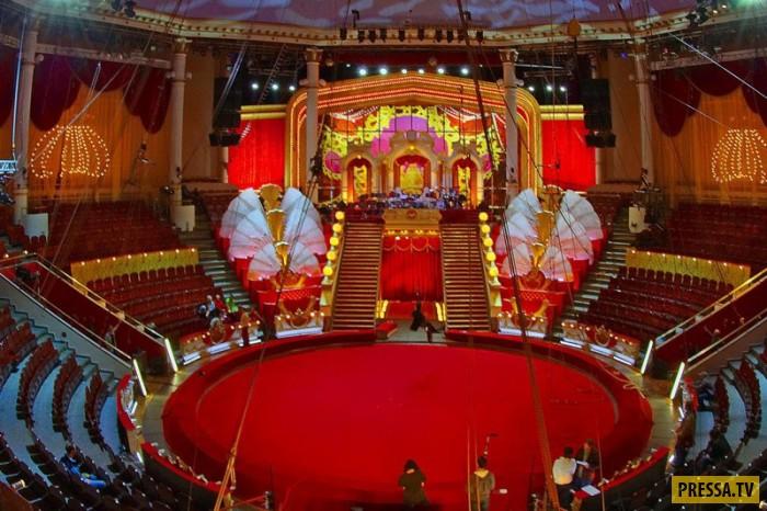 ТОП-9 трагедий на цирковых аренах (9 фото)