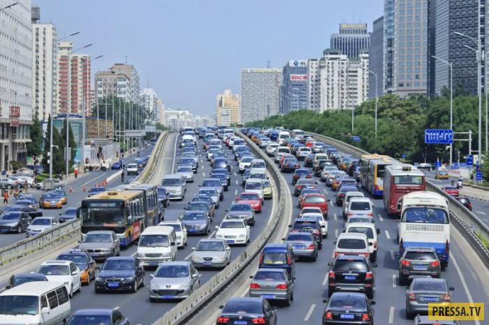 ТОП-10 странных правил дорожного движения в мире (10 фото)