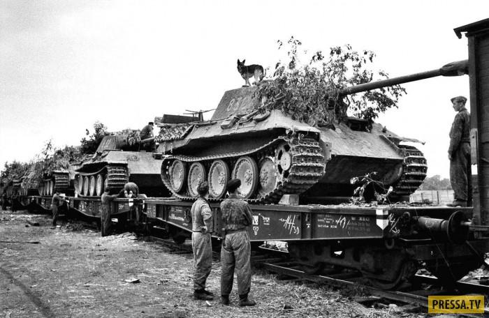 Вторая мировая война : редкие