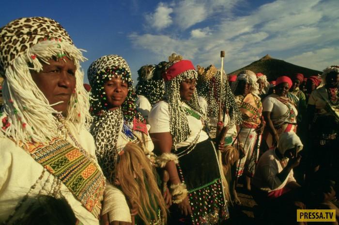 Колдуны и шаманы в африке приворот муж и жена выпьют кровь друг друга