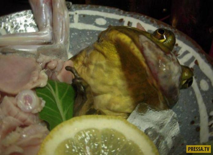ТОП-20 национальных блюд , которые лучше не смотреть перед едой (20 фото)