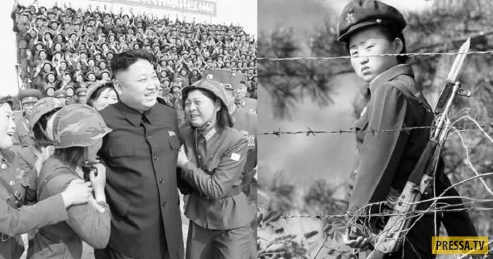 Порнография в южной корее