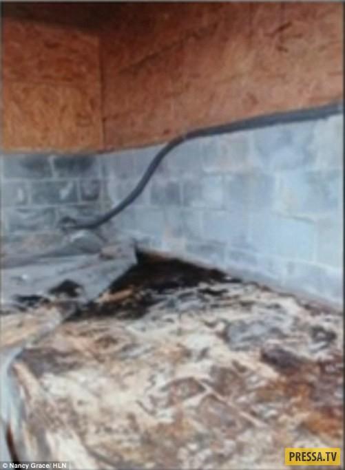 ТОП-8 жутких и опасных находок новых владельцев домов (12 фото)