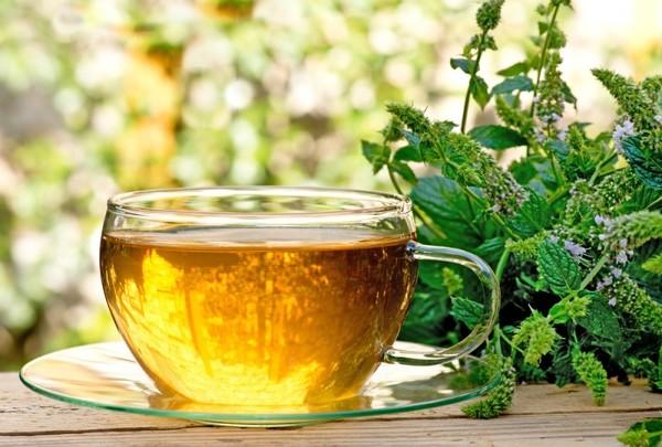 чай кудинова для похудения
