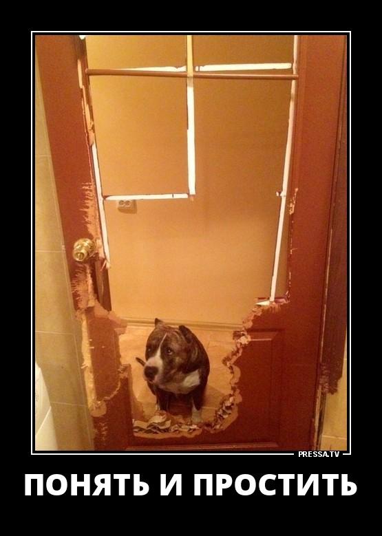 Демотиватор дверь закрыта