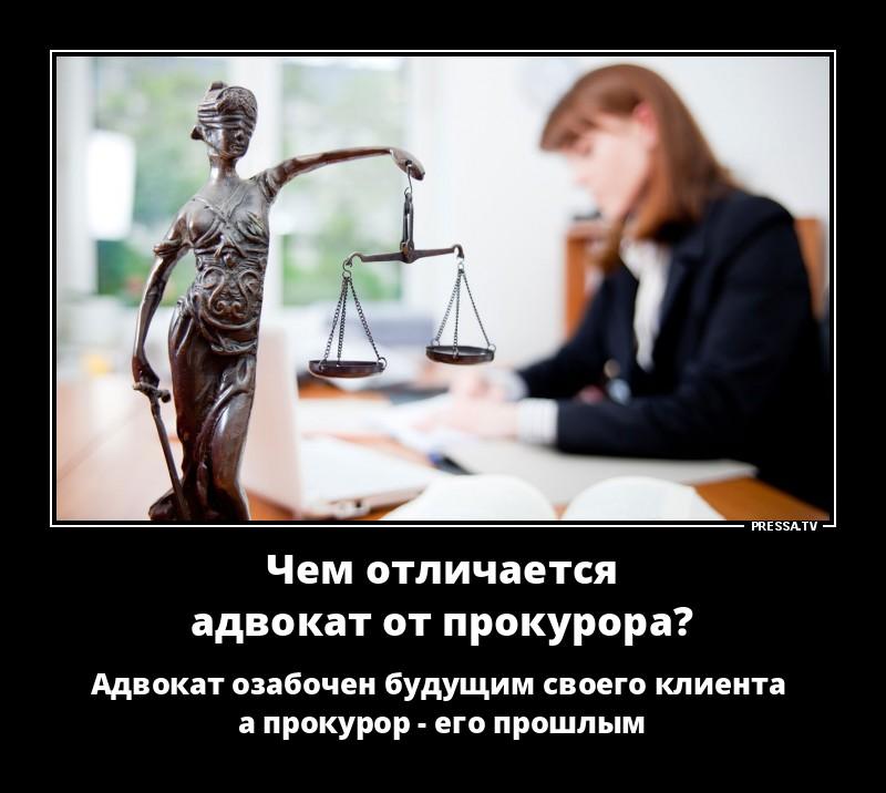 отличать смешные юридические картинки предназначены для овладения