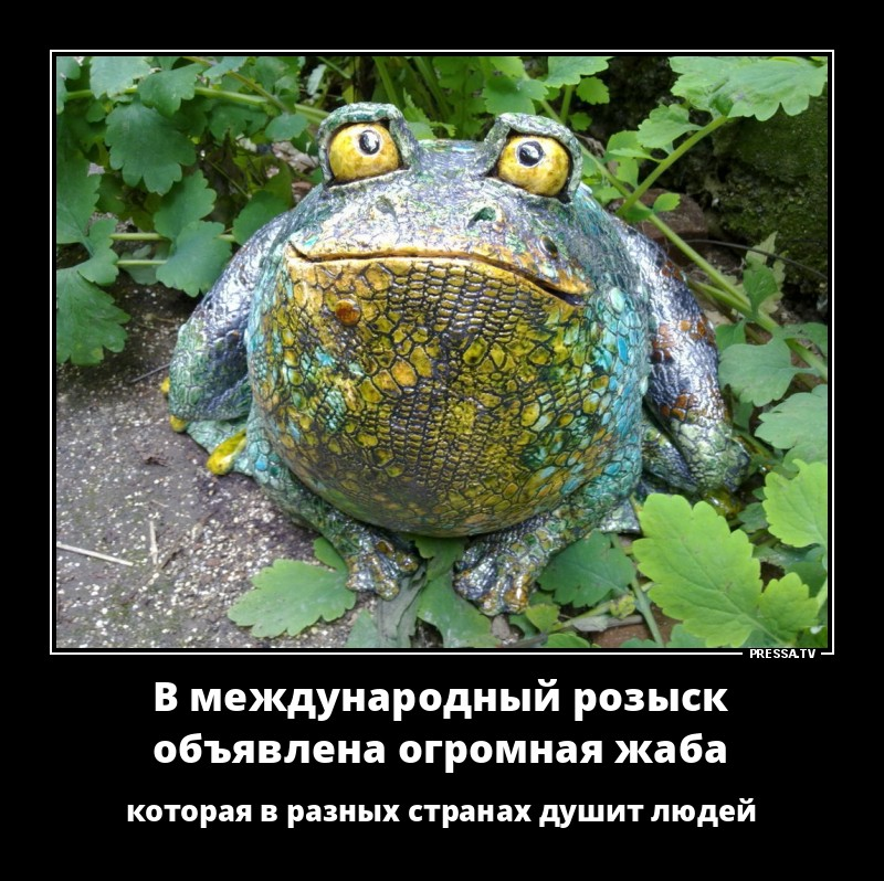 Открытки днем, прикольная картинка жабы которая душит
