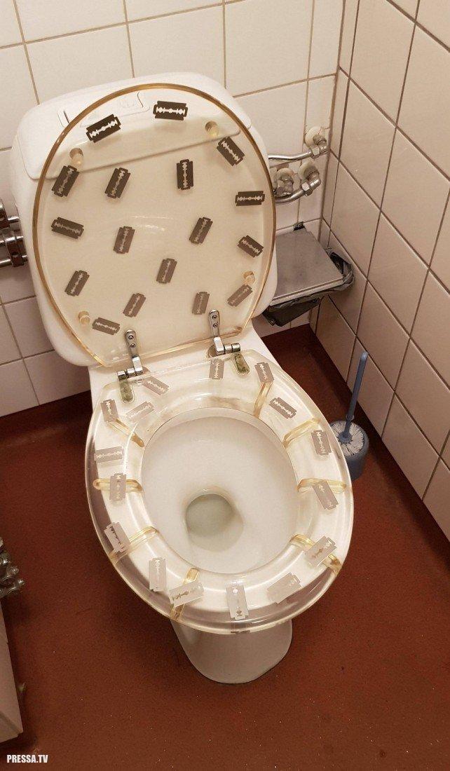 Картинки про туалет смешно