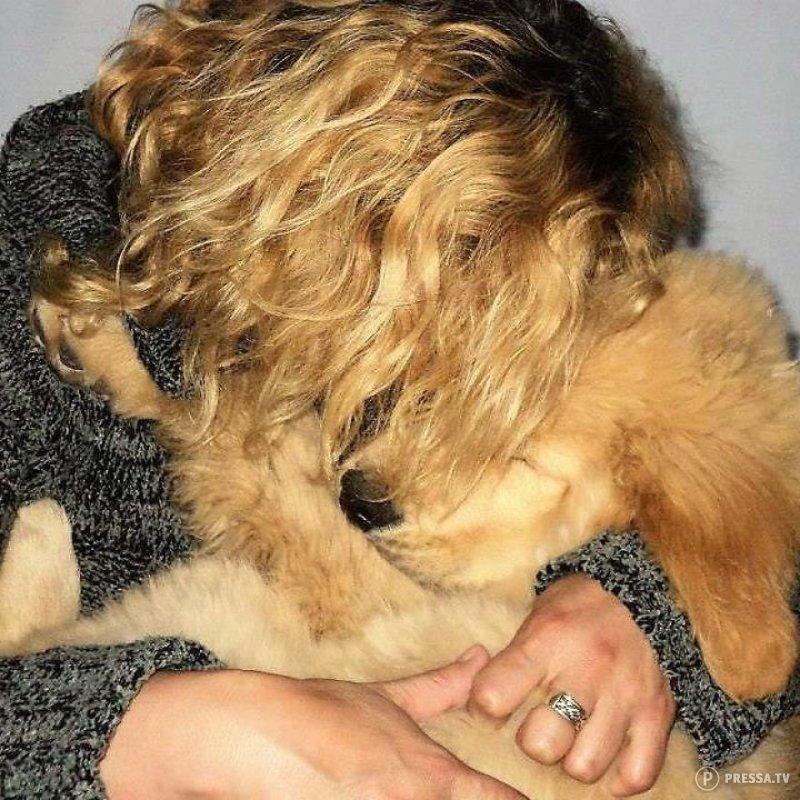 Женщина предлагает в награду автомобиль тому, кто вернет ее украденную собаку