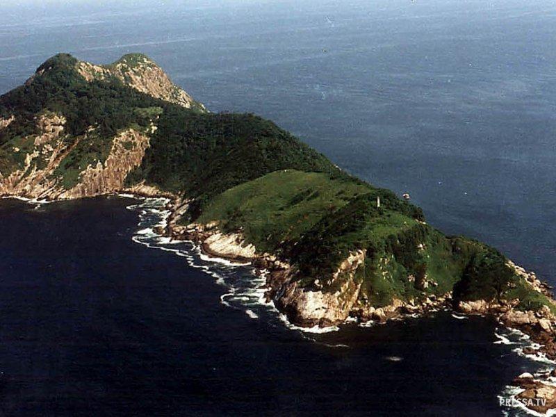 Бразильский остров Кеймада-Гранди кишит змеями и людям туда доступ запрещен