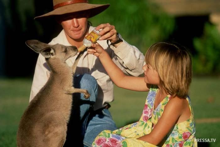 Туристам на заметку: как вести себя в Австралии