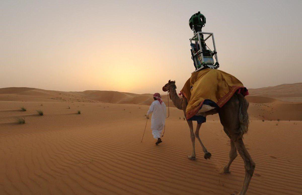 Картинки прикольные пустыня