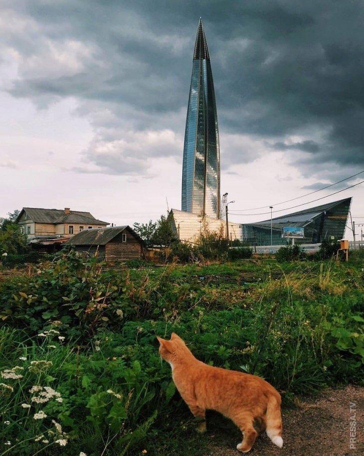 Забавные фотографии из Российской глубинки  38