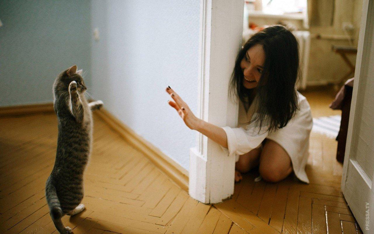 Девушка кошка смешные картинки