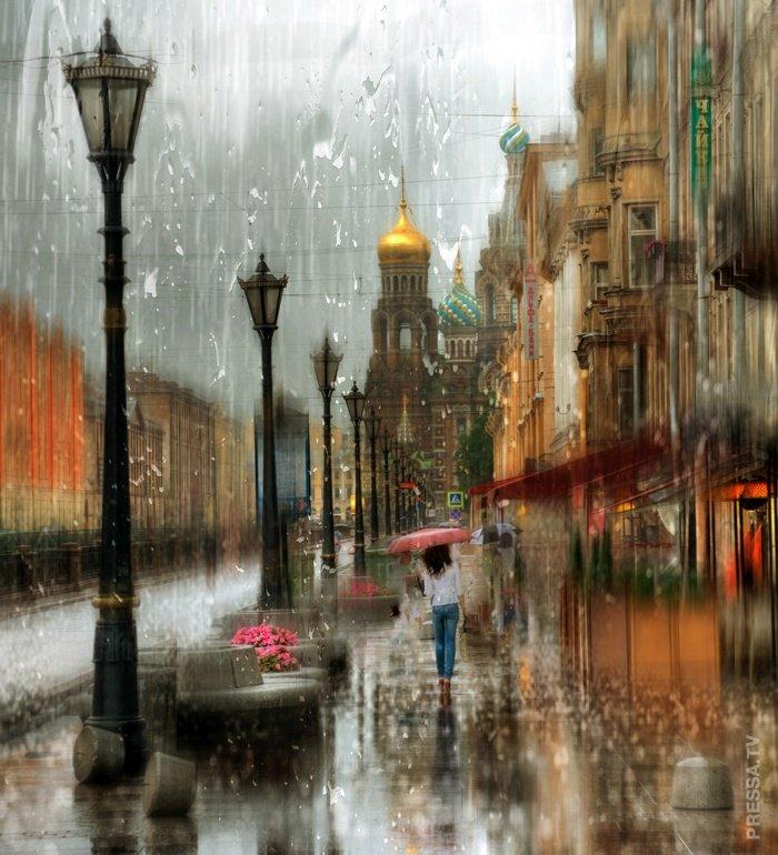 интернет-магазин дождь на улице картинка для печати как носом