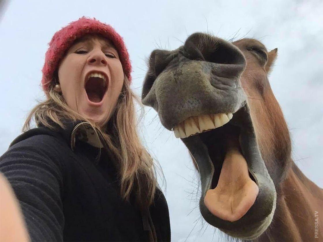 чилле зовет топ самых лучших смешных фотографий рассказываю