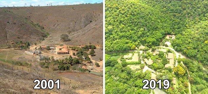Семейная пара посадила 2 миллиона деревьев за 20 лет