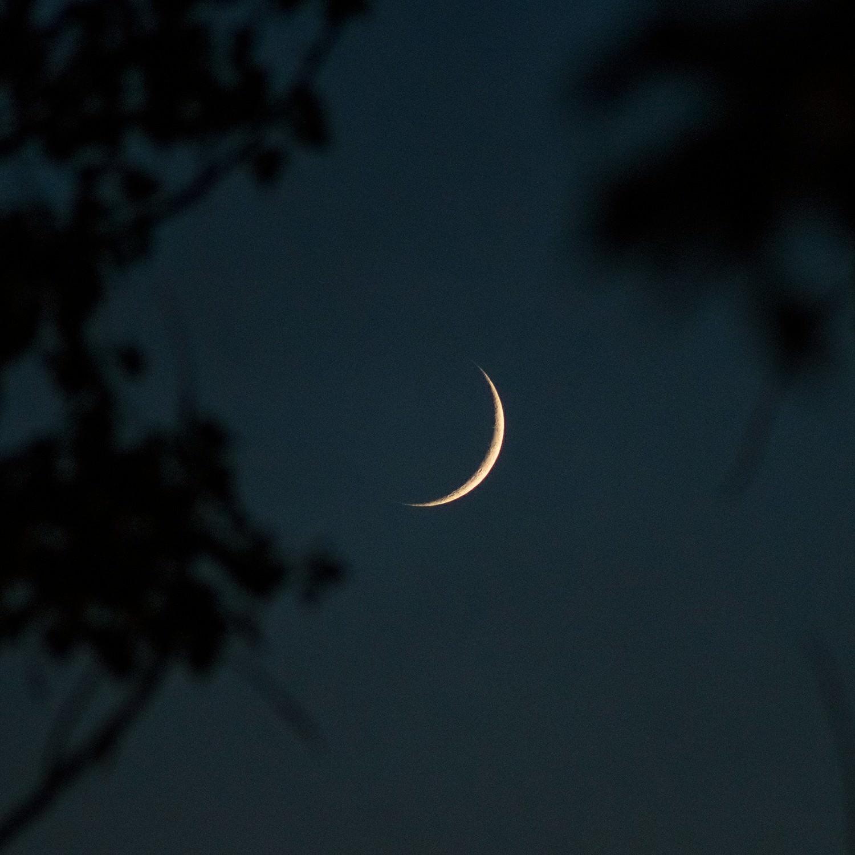 них изготавливают фотографии полумесяц луны все изолированные, санузел