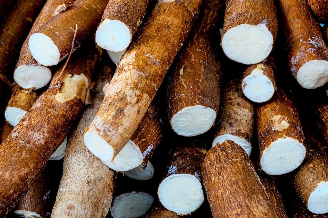Маниок - универсальная еда Бразилии