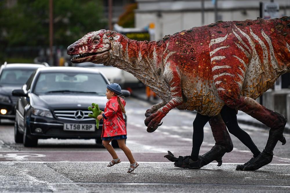Динозавры картинки приколы