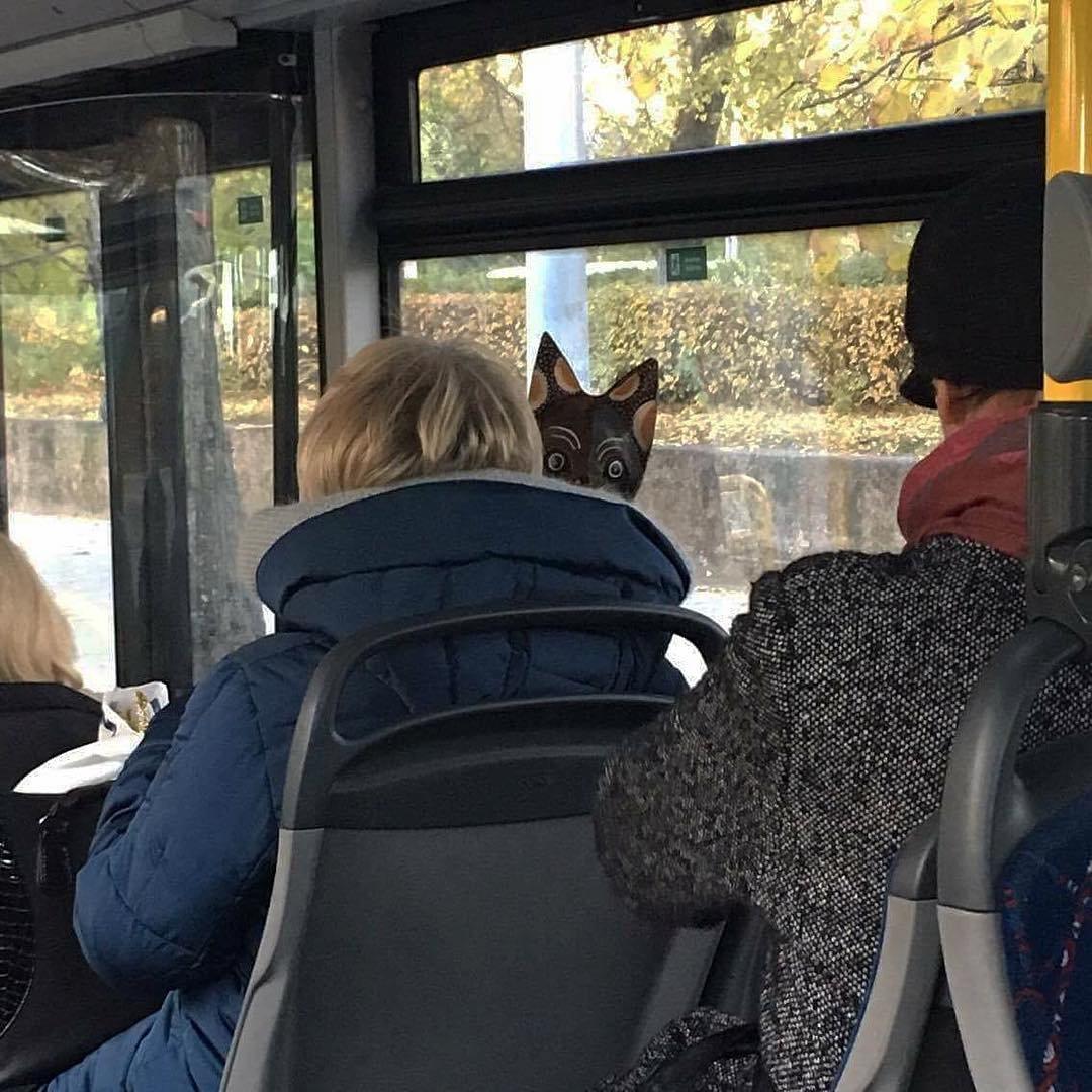 маленькие, смешные картинки пассажиров жернова запомнилась зрителям