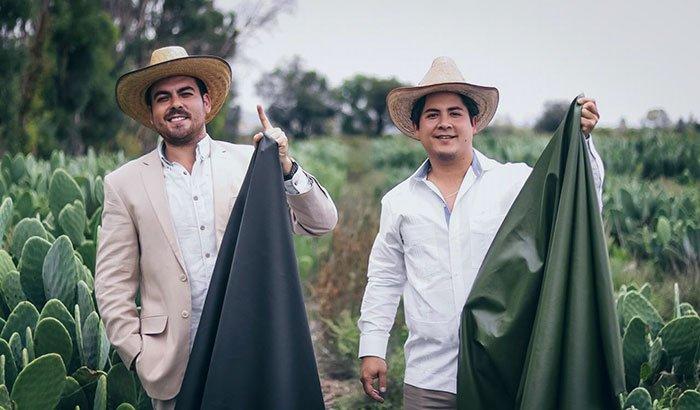В Мексике производят кожу из кактусов
